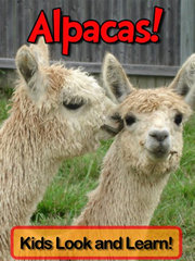 Alpacas - Kids Look and Learn Book written by Becky Wolff