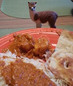 Ruffo the Alpaca enjoying Shrimp Masala