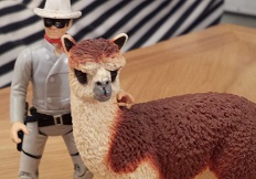 The Lone Ranger with Ruffo the Alpaca