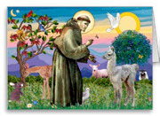 St Francis with Baby Llama