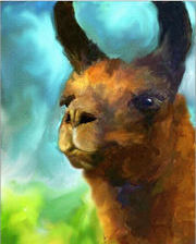 Llama Portrait Painting by Jai Johnson